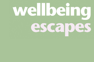 Wellbeing Escapes training client